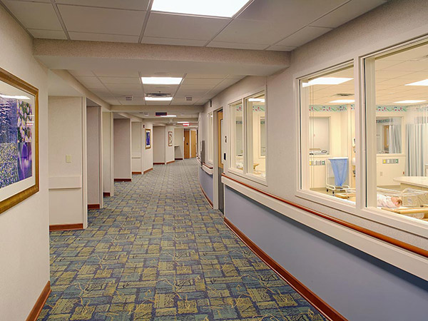 Carpet healthcare milliken sense