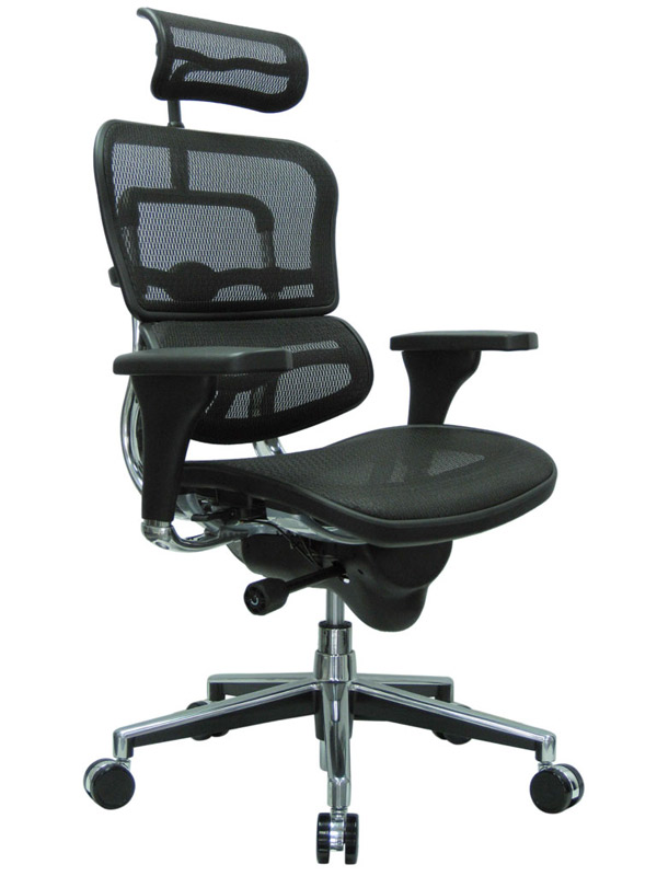 Eurotech Ergohuman black mesh chair