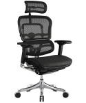 Eurotech ErgoElite High-Back Black Mesh Modern Desk Chair ME22ERGLT-N15
