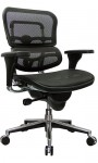 Eurotech Ergohuman ergonomic mesh desk chair free shipping