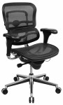 Ergonomic, Work and Mesh Chairs