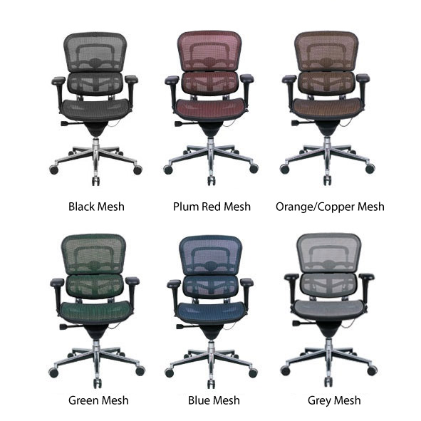 Buy Eurotech Ergohuman Chair - Ergonomic Chairs