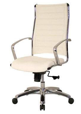 eurotech europa chair leather and chrome free shipping